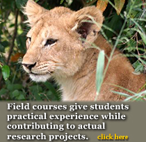 Lion Conservation Fund Classes